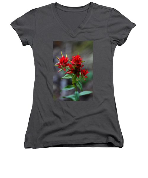 Scarlet Red Indian Paintbrush Women's V-Neck T-Shirt (Junior Cut) by Karon Melillo DeVega