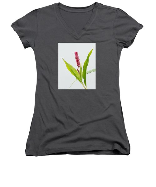 Scarlet Smartweed Women's V-Neck (Athletic Fit)