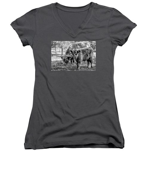 Scottish Highland Cattle Black And White Women's V-Neck T-Shirt