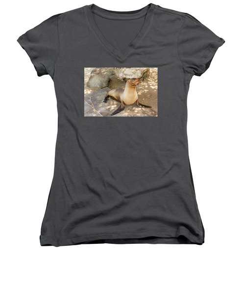 Sea Lion On The Beach, Galapagos Islands Women's V-Neck T-Shirt