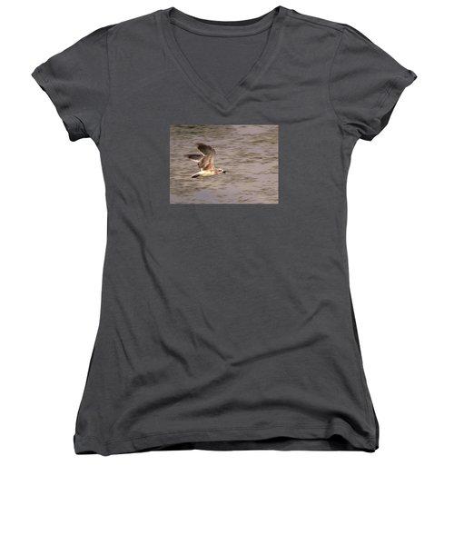 Seagull Flight Women's V-Neck