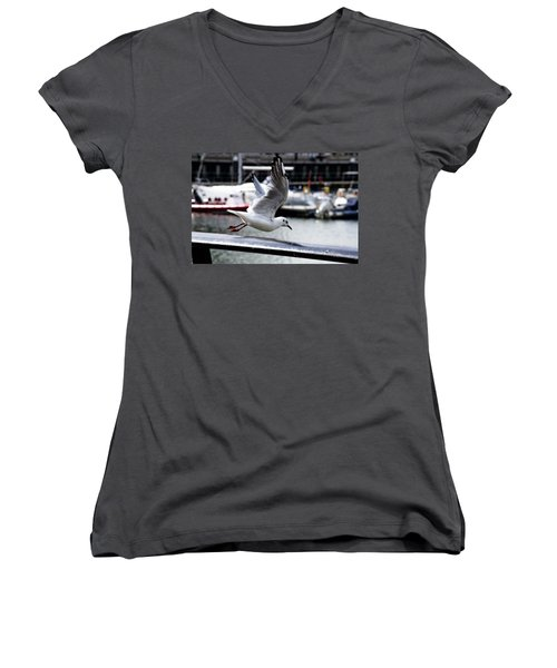 Seagull Women's V-Neck (Athletic Fit)