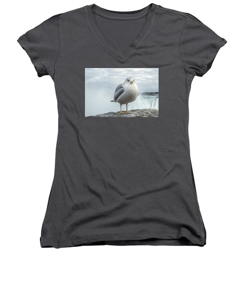 Seagull Model Women's V-Neck