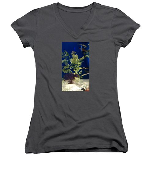 Seahorse Women's V-Neck (Athletic Fit)