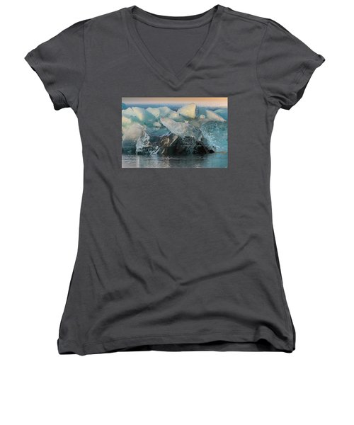 Seal Nature Sculpture Women's V-Neck T-Shirt