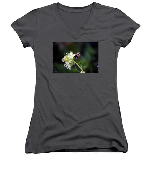 Searching For Pollen Women's V-Neck (Athletic Fit)