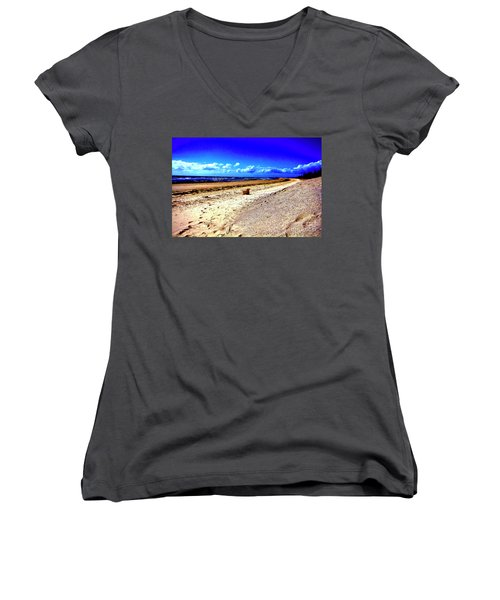 Women's V-Neck T-Shirt (Junior Cut) featuring the photograph Seat For One by Douglas Barnard