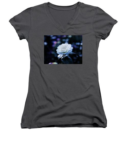 Secrets Of Nature Women's V-Neck T-Shirt (Junior Cut) by Bernd Hau
