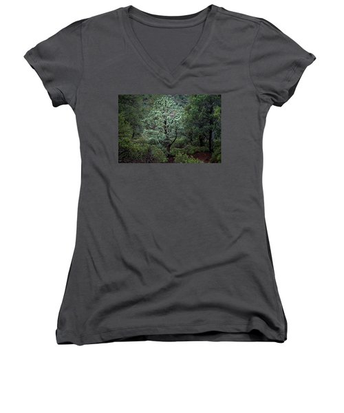 Sedona Tree #1 Women's V-Neck