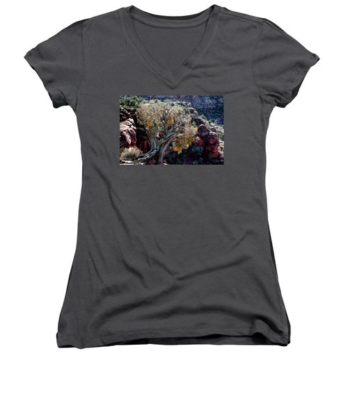 Sedona Tree #2 Women's V-Neck