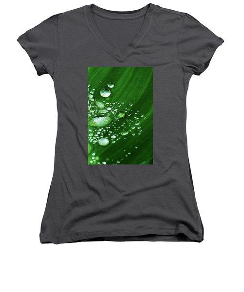 Growing Carefully Women's V-Neck T-Shirt (Junior Cut) by John Glass