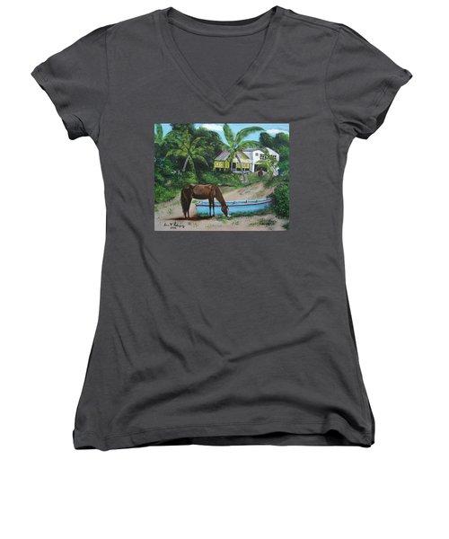 Serenity Women's V-Neck T-Shirt (Junior Cut) by Luis F Rodriguez