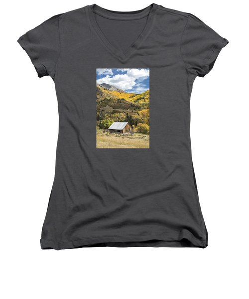 Shack With Relics Women's V-Neck T-Shirt