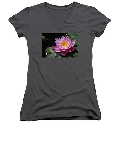 Shades Of Pink Women's V-Neck T-Shirt