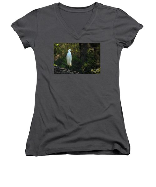 Shadow Heron Women's V-Neck (Athletic Fit)