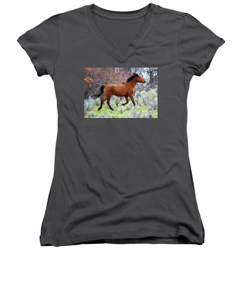 Women's V-Neck T-Shirt (Junior Cut) featuring the photograph Shaggy And Proud by Mike Dawson
