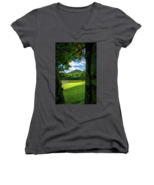 Sharp Top Through The Trees Women's V-Neck (Athletic Fit)