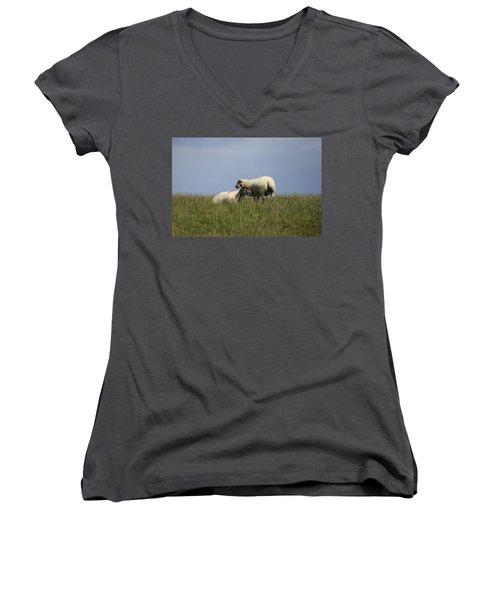 Sheep 4221 Women's V-Neck