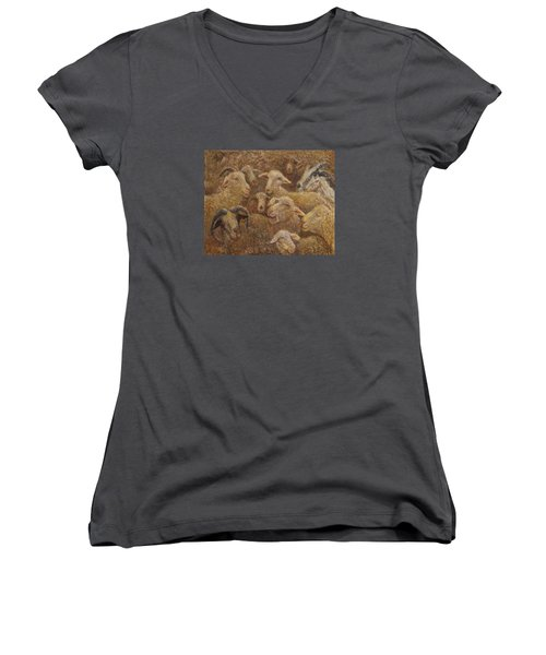 Sheep And Goats Women's V-Neck T-Shirt