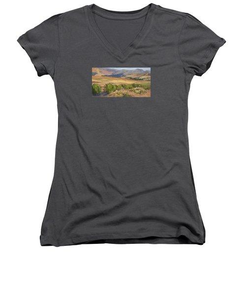 Sheep Gate Women's V-Neck T-Shirt (Junior Cut) by Jane Thorpe