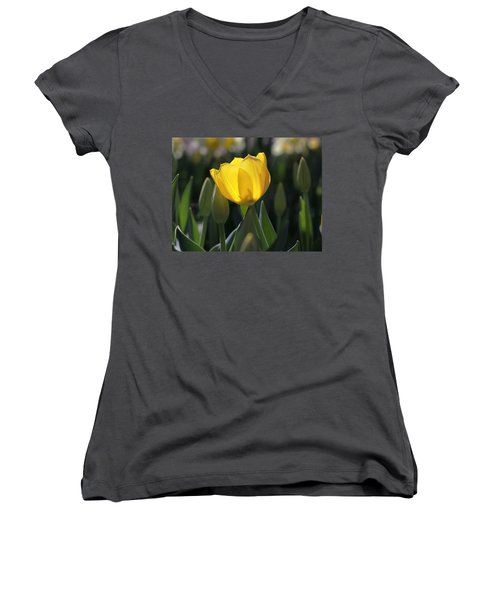 Sheer Yellow Women's V-Neck T-Shirt