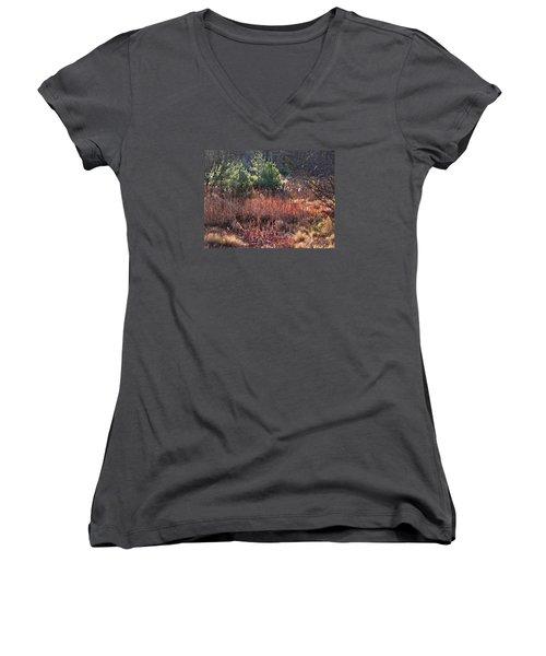Shimmering Sunlight On The Cattails Women's V-Neck T-Shirt (Junior Cut) by Joy Nichols
