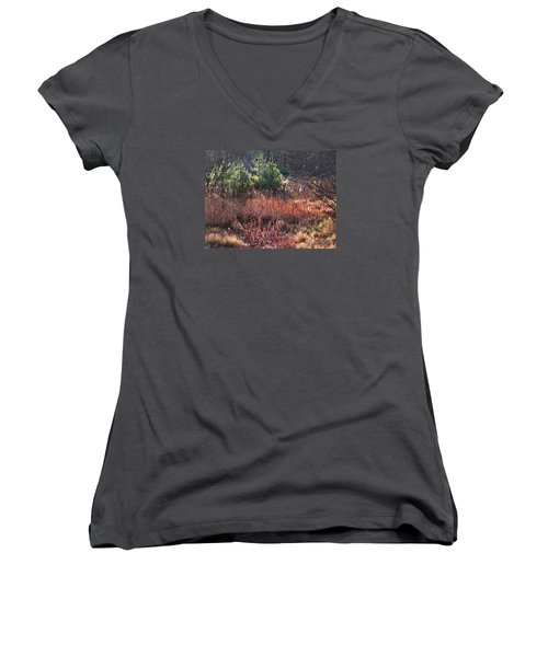 Shimmering Sunlight On The Cattails Women's V-Neck T-Shirt
