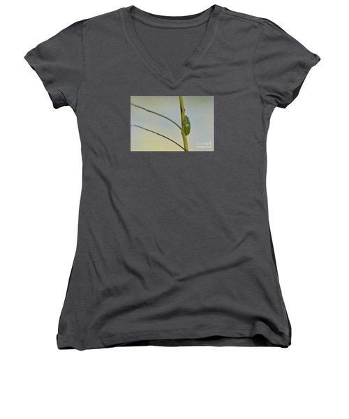 Doris Day Shining Bright Women's V-Neck T-Shirt (Junior Cut) by Kathy Gibbons