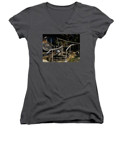 Shoreline Steps  Women's V-Neck T-Shirt (Junior Cut) by Anne Havard