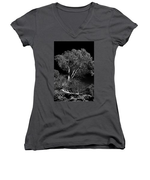 Women's V-Neck T-Shirt (Junior Cut) featuring the photograph Shoreline Tree by Roger Mullenhour