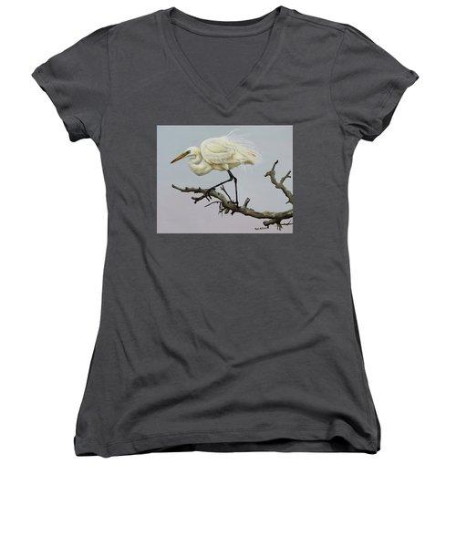 Show Off Women's V-Neck T-Shirt (Junior Cut) by Phyllis Beiser