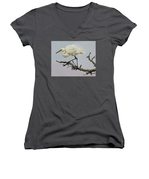 Show Off Women's V-Neck T-Shirt