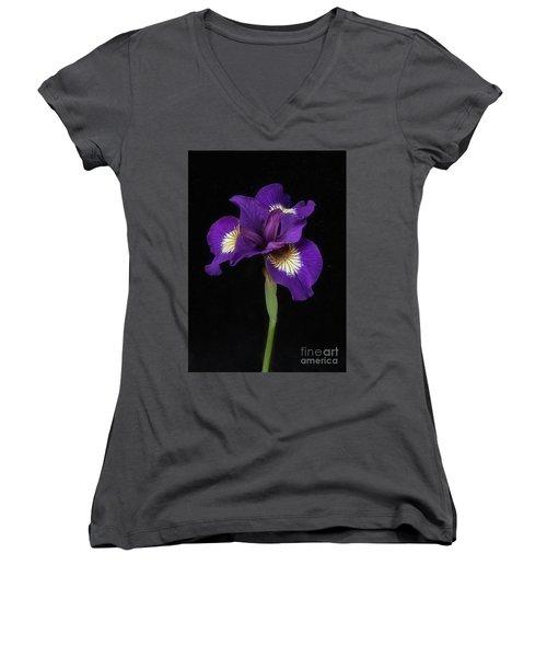 Siberian Iris Women's V-Neck