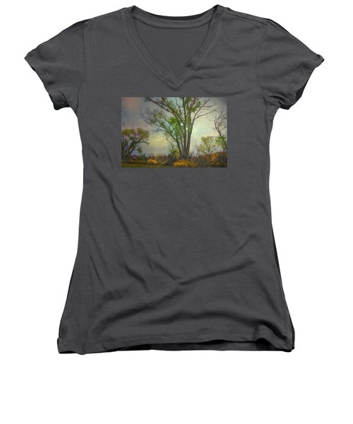 Signs  Women's V-Neck T-Shirt (Junior Cut) by Mark Ross