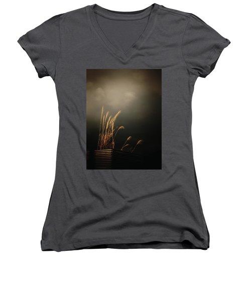 Silver Grass Women's V-Neck T-Shirt (Junior Cut) by Rachel Mirror