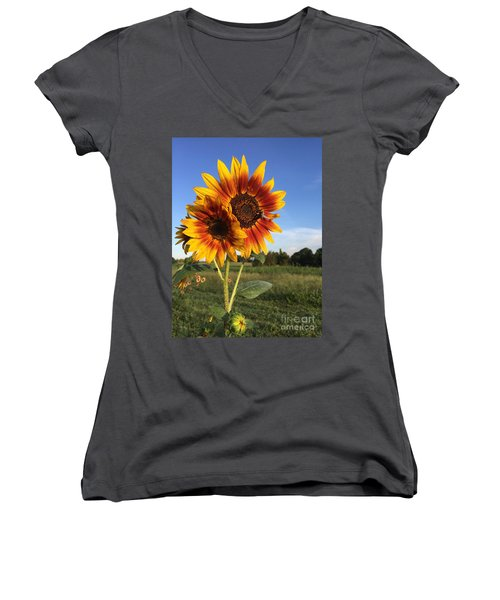 Sunflower  Beauty Women's V-Neck