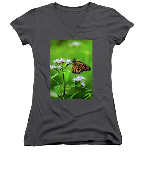Simple Beauty Women's V-Neck (Athletic Fit)