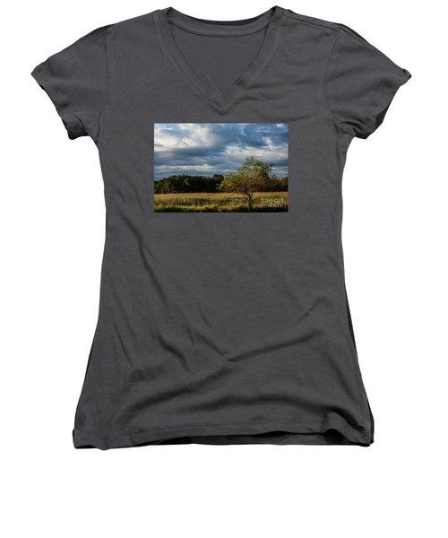 Simplicity Women's V-Neck T-Shirt (Junior Cut) by Iris Greenwell