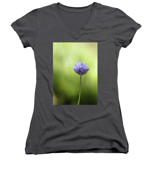 Simply Blue Women's V-Neck (Athletic Fit)