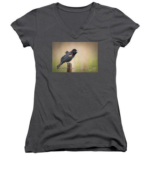 Sing A Little Song Women's V-Neck T-Shirt