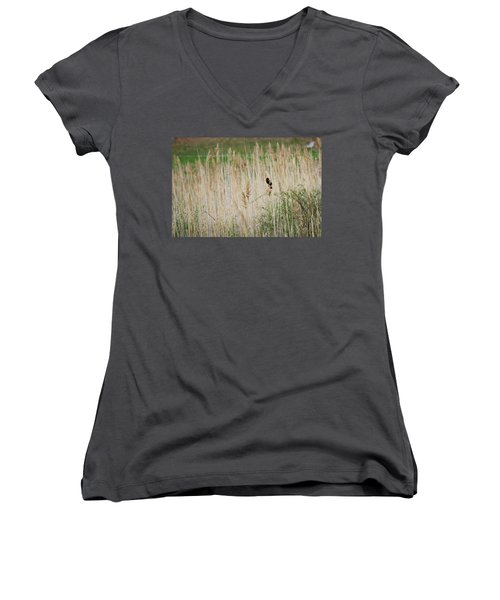 Women's V-Neck T-Shirt (Junior Cut) featuring the photograph Sing For Spring by Bill Wakeley