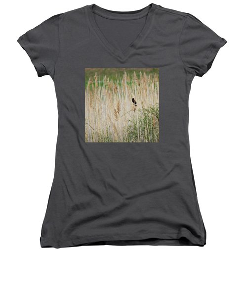 Women's V-Neck T-Shirt (Junior Cut) featuring the photograph Sing For Spring Square by Bill Wakeley