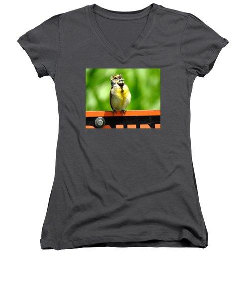 Singing Dickcissel Women's V-Neck T-Shirt