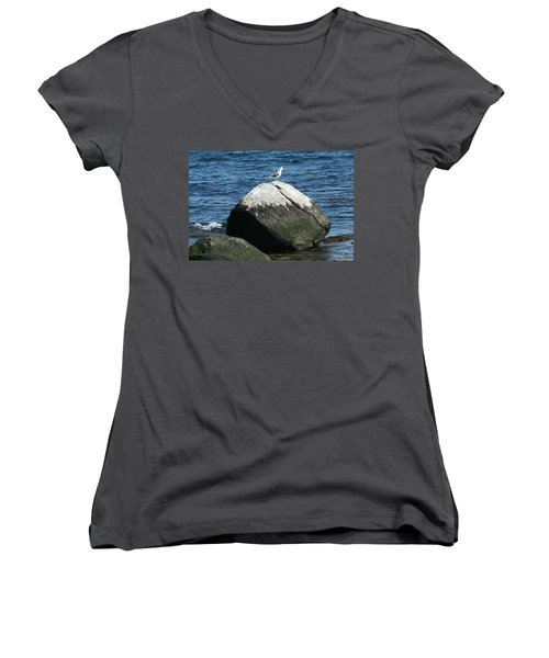 Women's V-Neck T-Shirt (Junior Cut) featuring the digital art Singing Seagull by Barbara S Nickerson