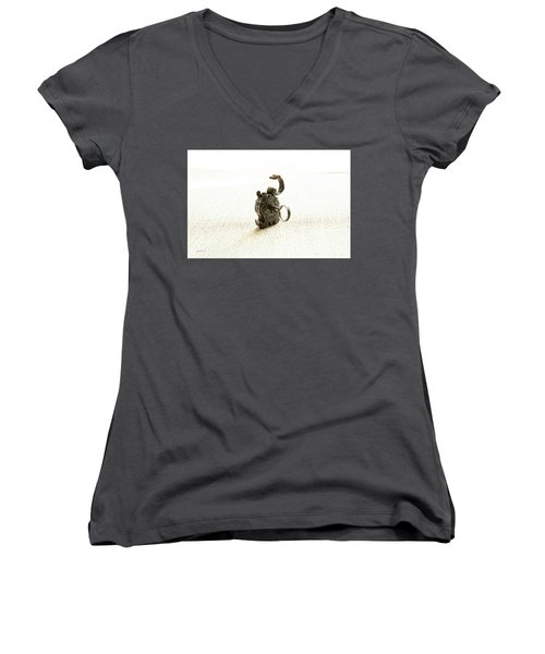 Single And Open Women's V-Neck (Athletic Fit)