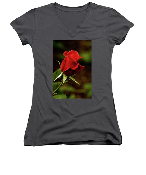 Women's V-Neck T-Shirt (Junior Cut) featuring the photograph Single Red Rose Bud by Jacqi Elmslie