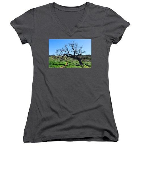 Single Tree Over Narrow Path Women's V-Neck T-Shirt