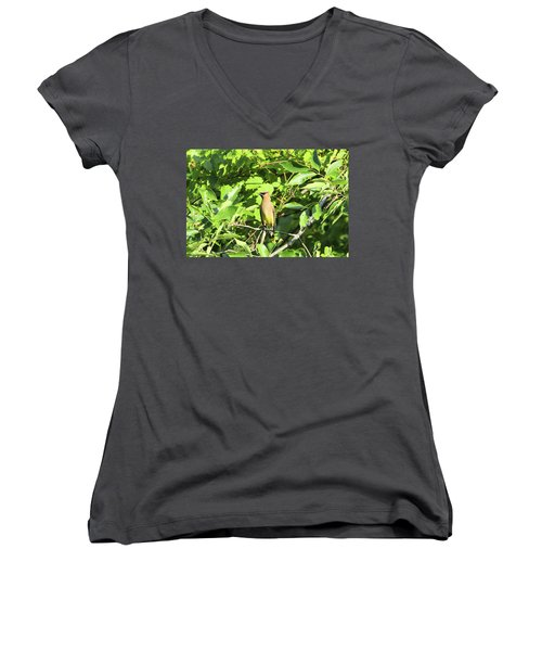 Sitting Pretty Women's V-Neck T-Shirt (Junior Cut) by David Stasiak