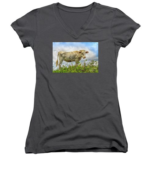 Skinny Cow Women's V-Neck (Athletic Fit)
