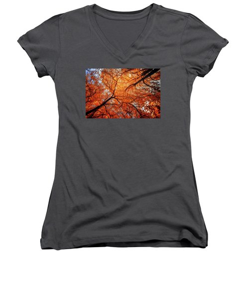 Sky Roots In Forest Red Women's V-Neck T-Shirt (Junior Cut) by John Williams